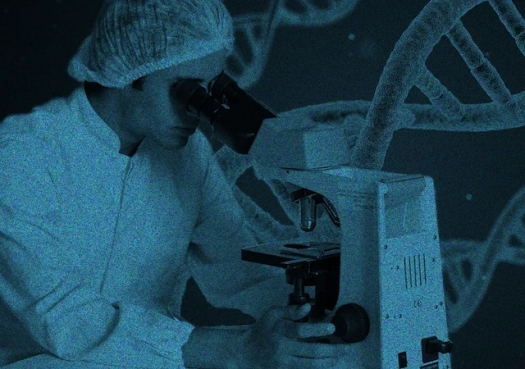 Orçamento 2021 compromete futuro da ciência brasileira