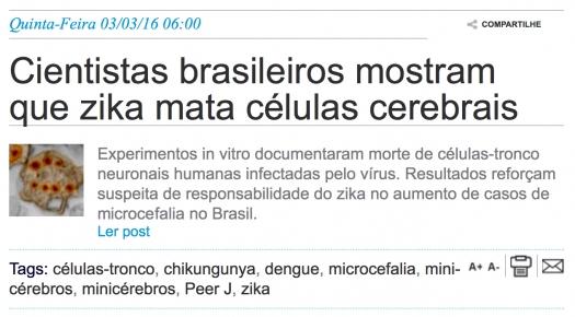 Cientistas brasileiros mostram que zika mata células cerebrais