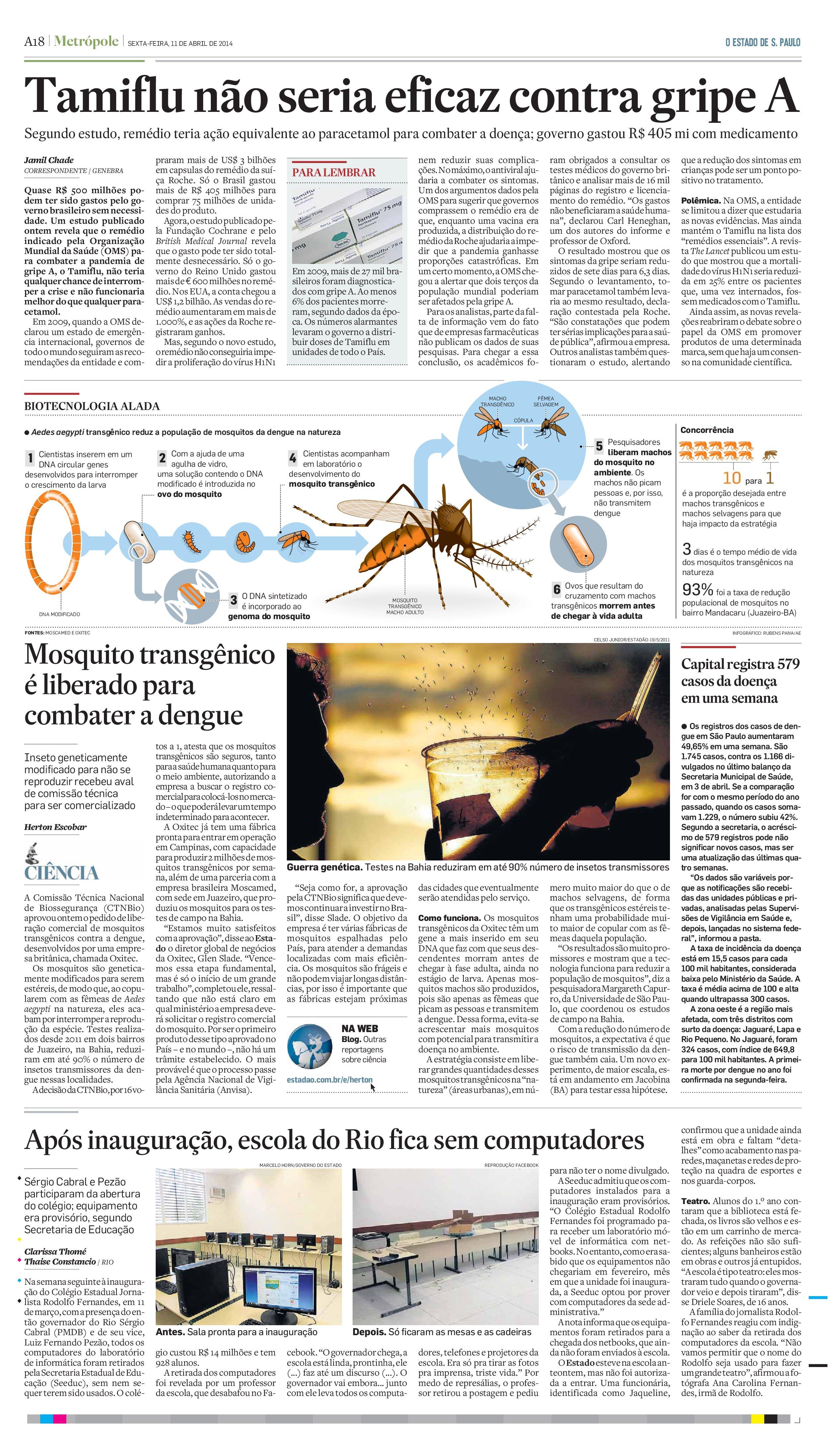 Mosquito transgênico é liberado para combater a dengue no Brasil
