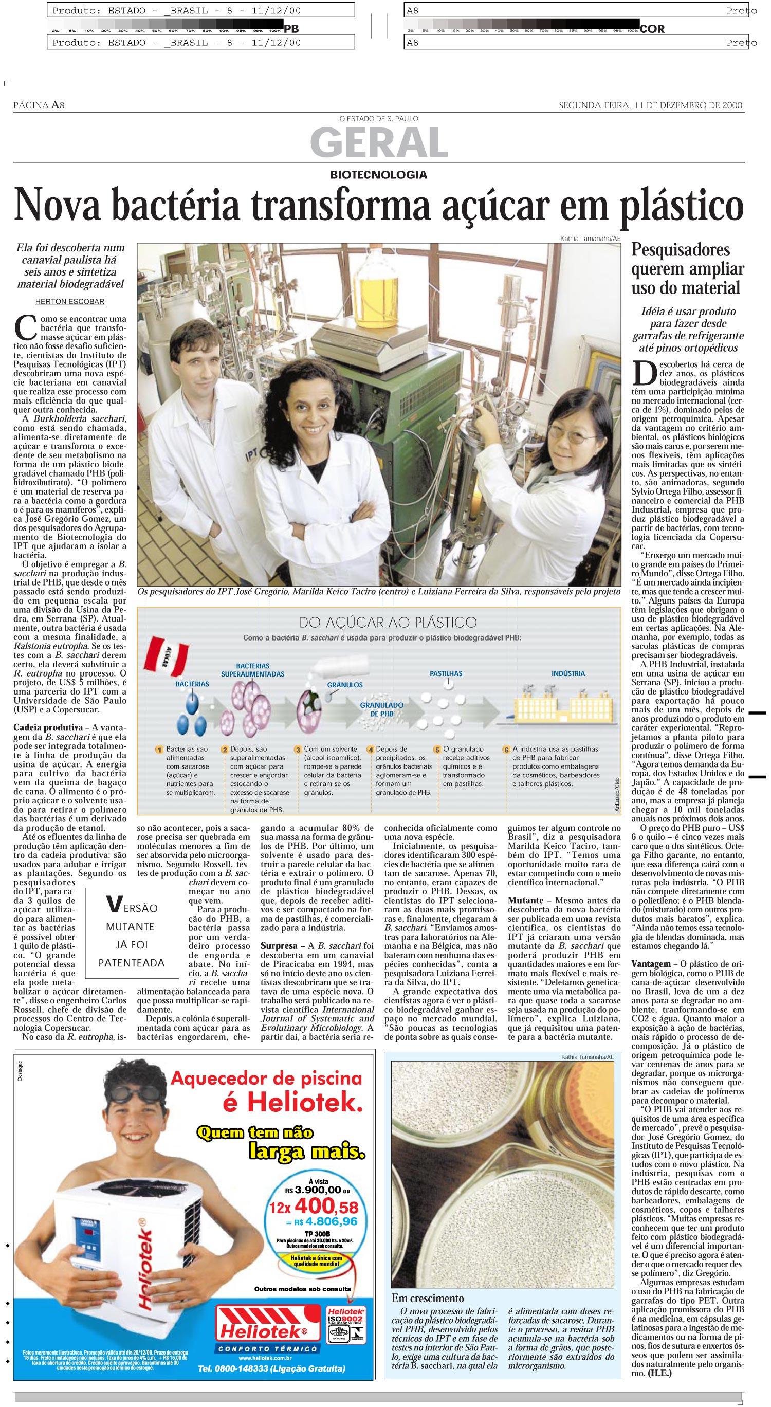 Nova bactéria transforma açúcar em plástico