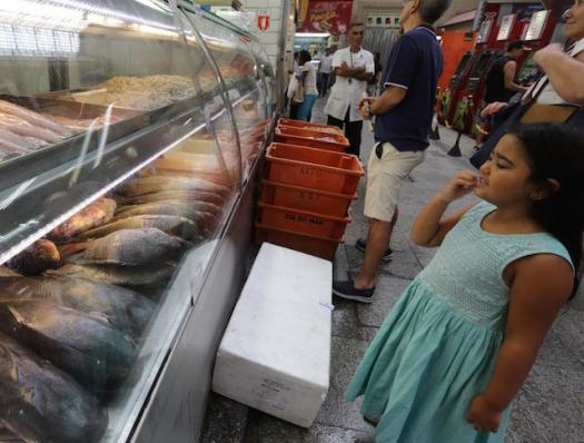 Quanto se pesca no Brasil? Ninguém sabe!