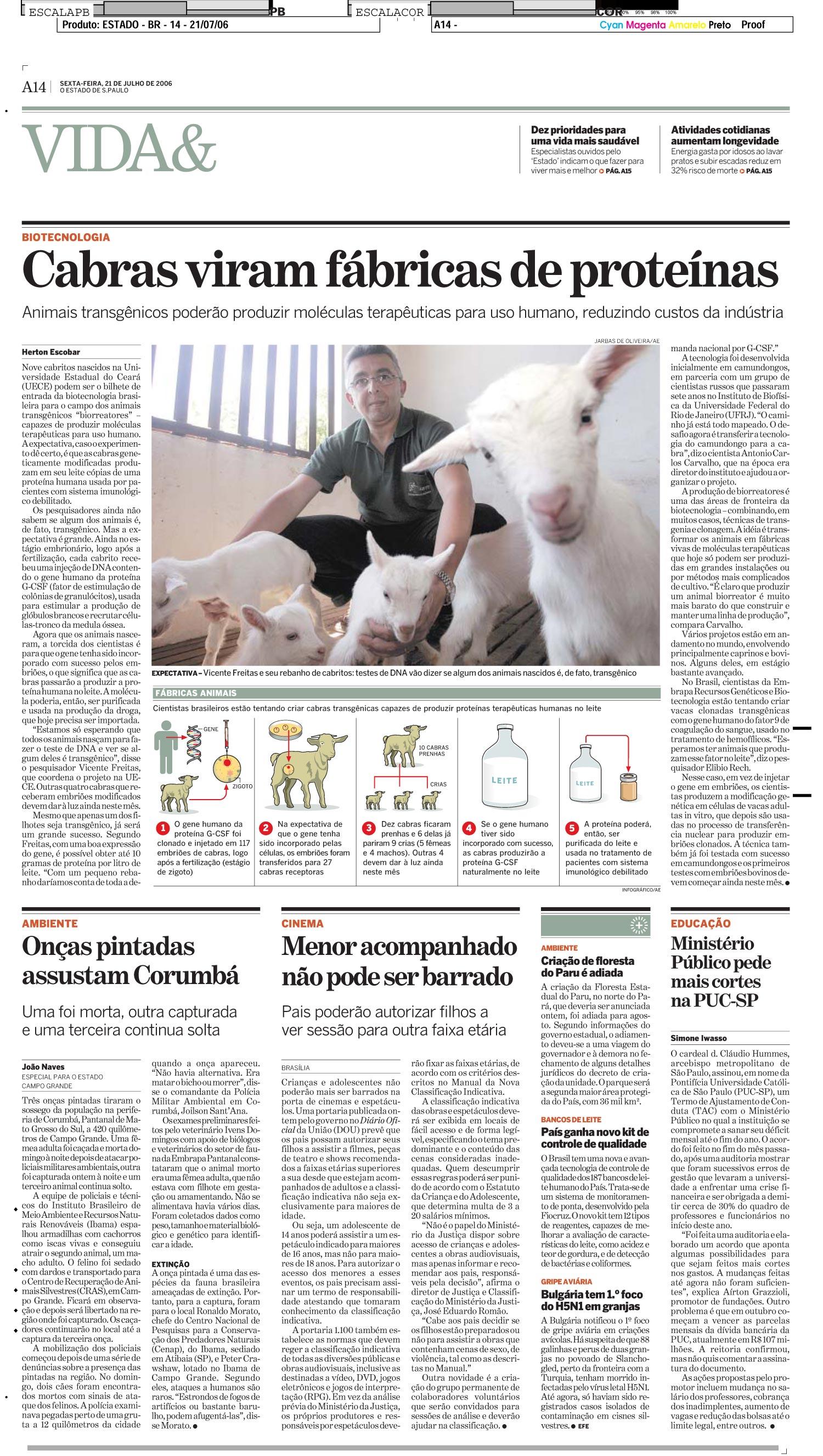Cabras viram fábricas de proteínas