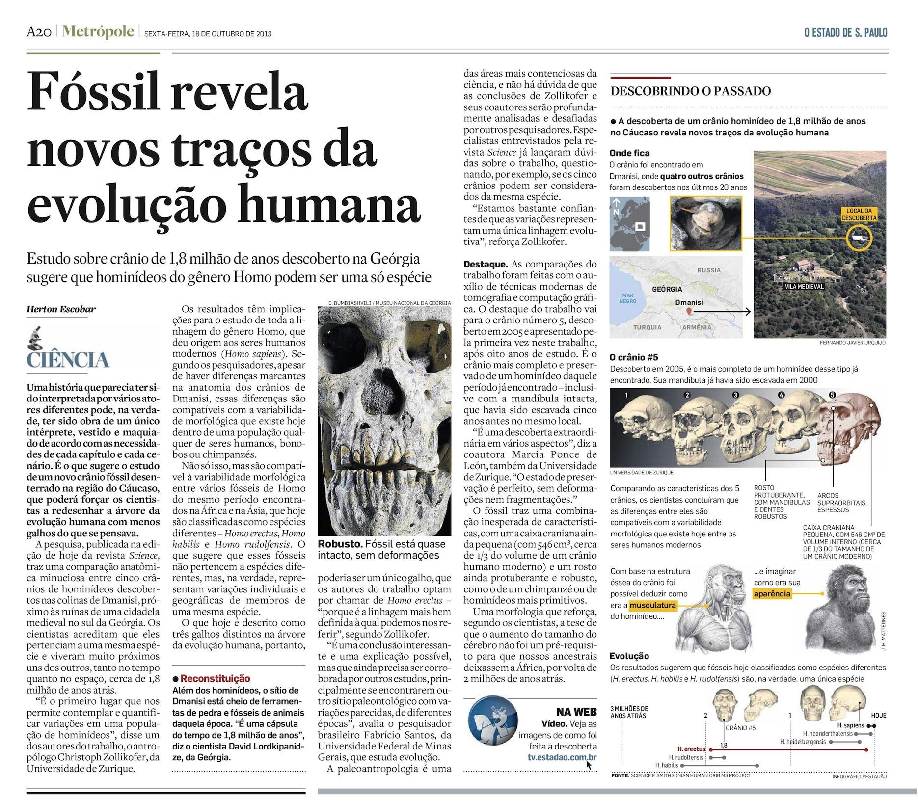 Fóssil de Dmanisi revela nova face da evolução humana