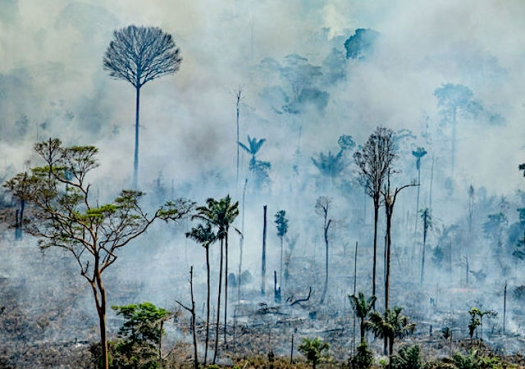There is no doubt that Brazil fires are linked to deforestation, scientists say