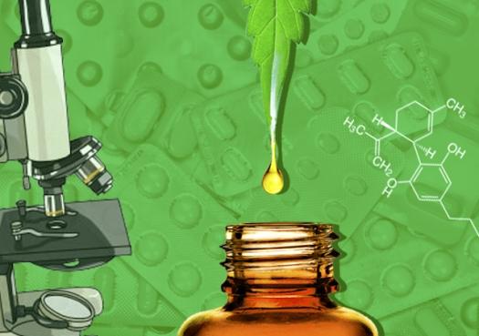 Canabidiol desenvolvido na USP chega às farmácias