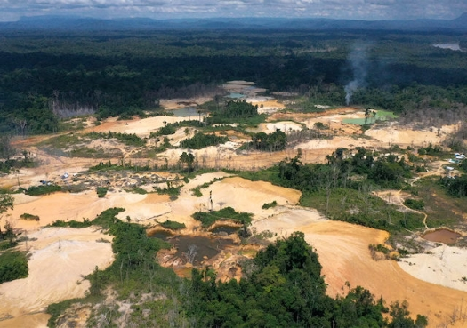 Illegal deforestation in Brazil soars amid climate of impunity