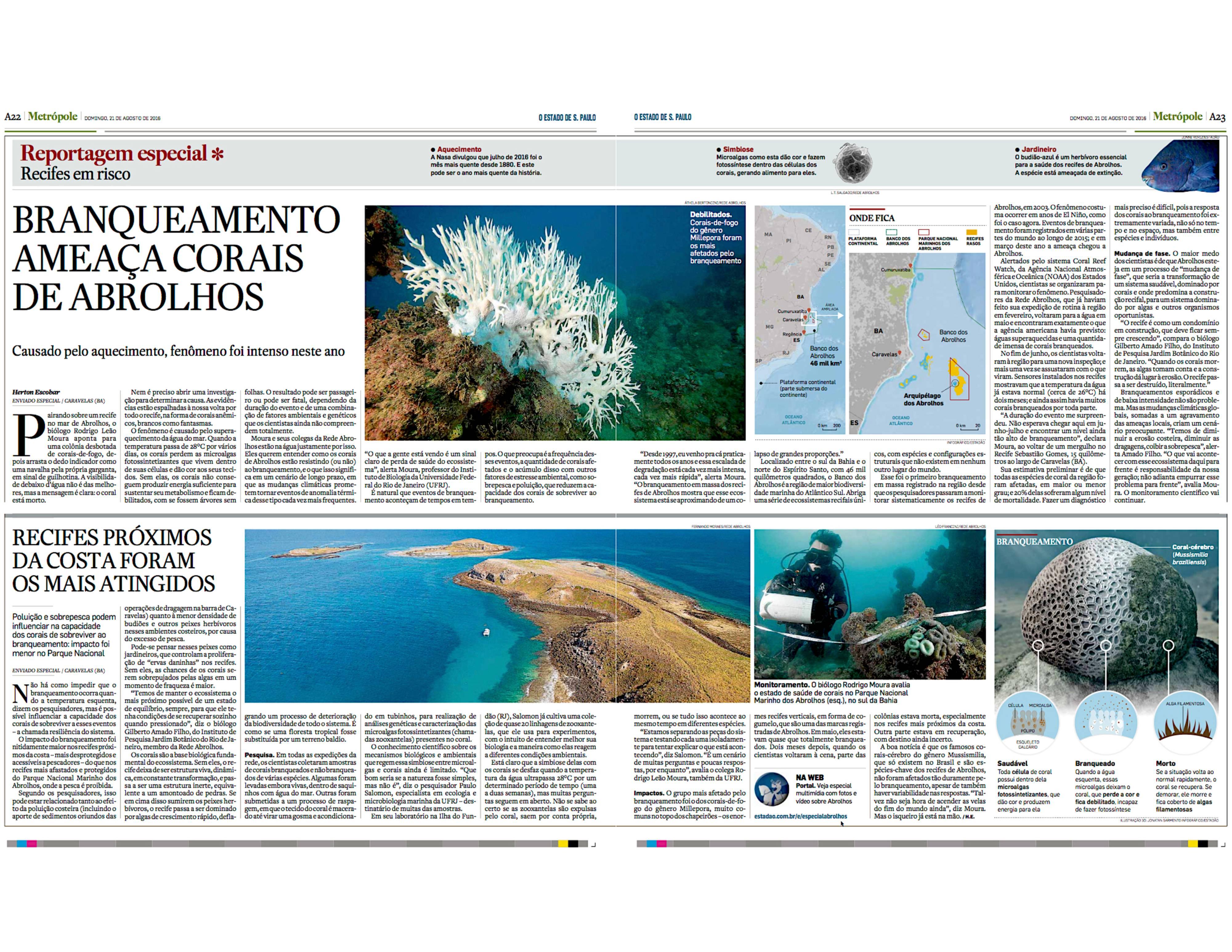 Branqueamento ameaça recifes de Abrolhos