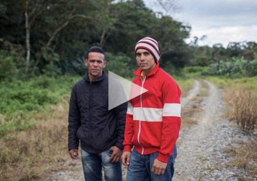 Jiboia-do-ribeira: Um encontro inesperado