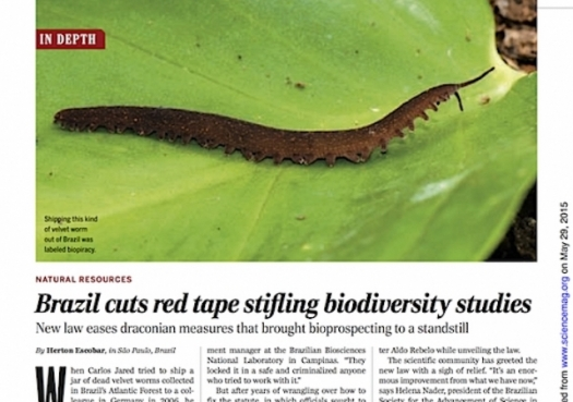 Brazil cuts red tape stifling biodiversity studies