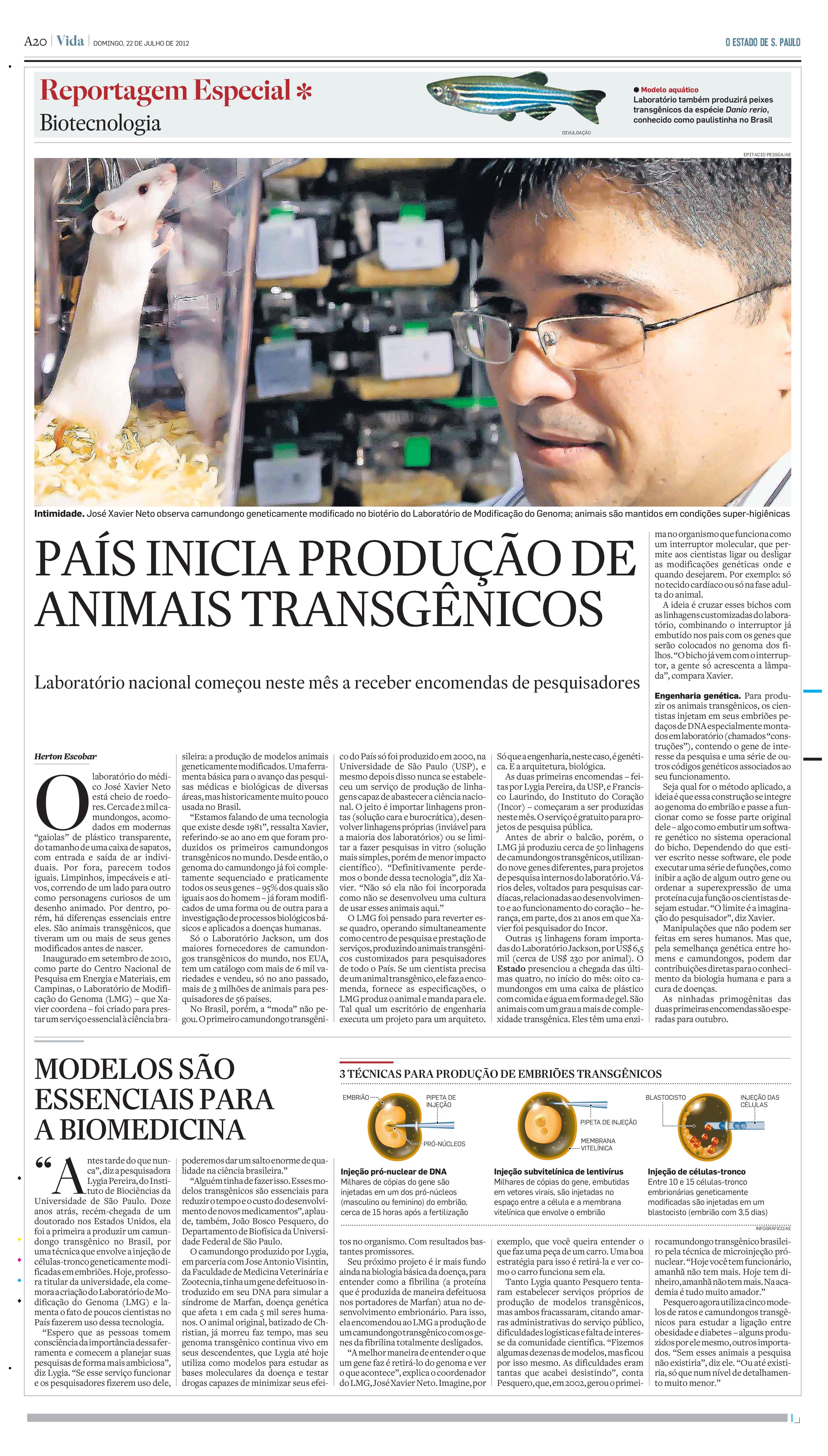 Brasil inicia produção de animais transgênicos
