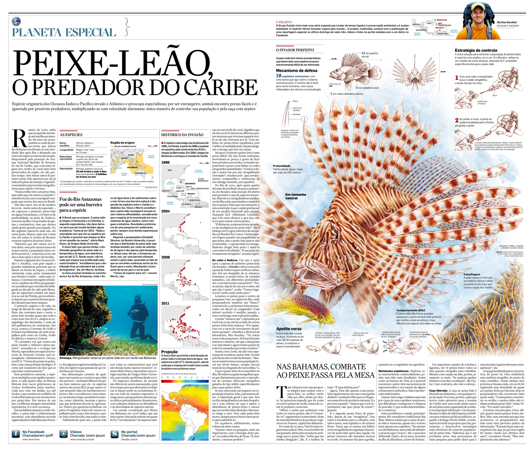 Repórter Viajante: Peixe-leão, o terror do Caribe