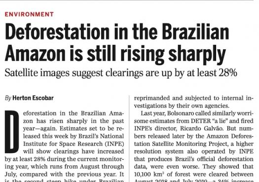 Deforestation in the Brazilian Amazon is still rising sharply