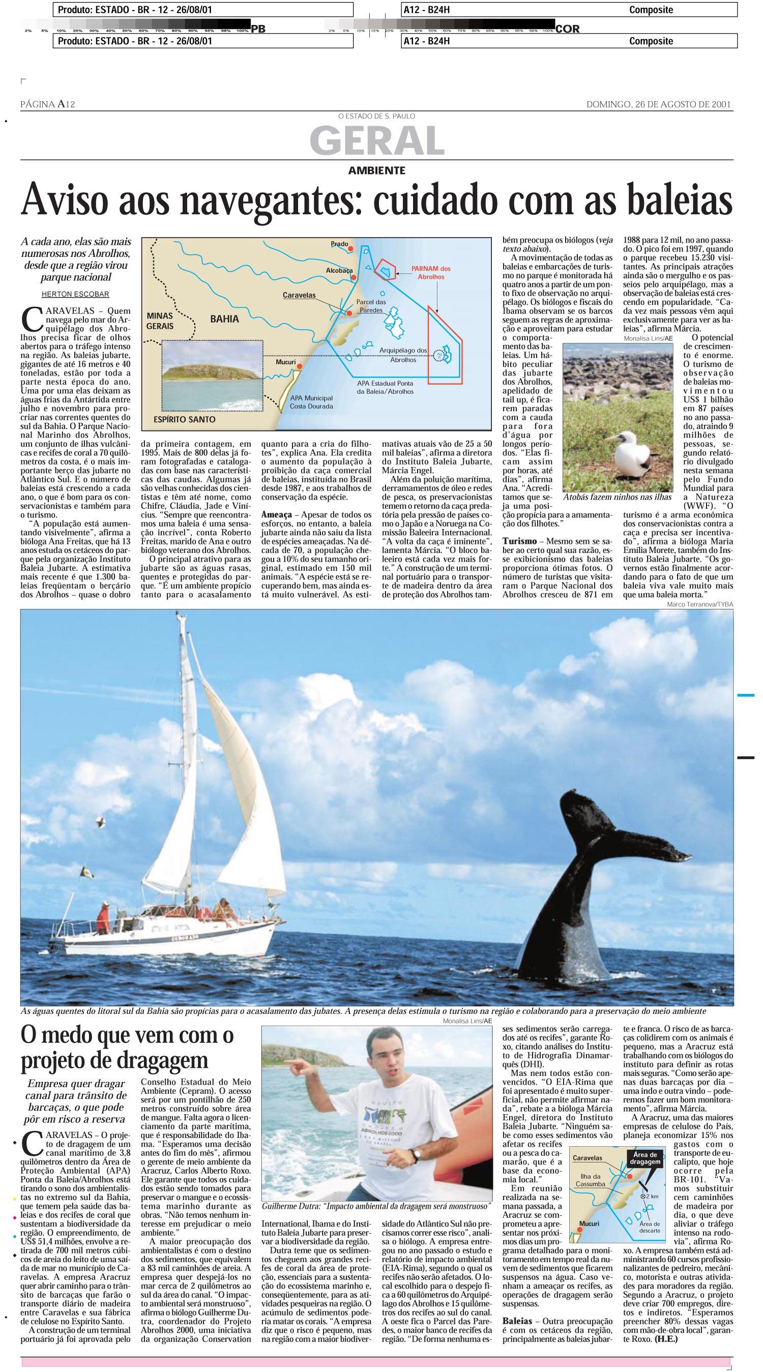 Aviso aos navegantes: cuidado com as baleias