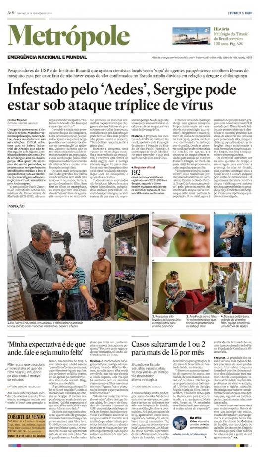 Infestado pelo Aedes Sergipe pode estar sob ataque tríplice de vírus