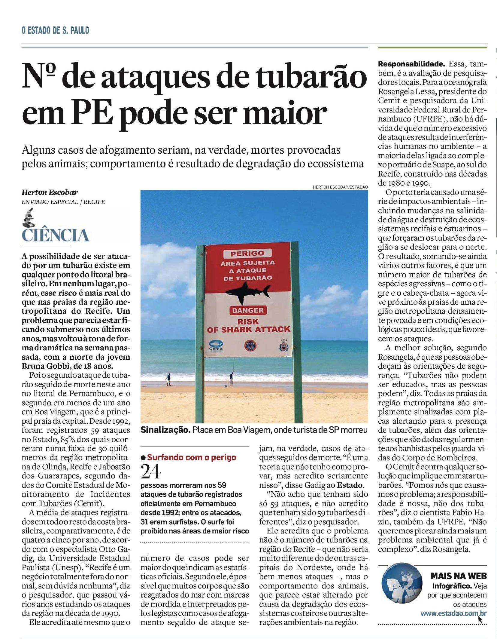Número de ataques de tubarão no Recife pode ser maior