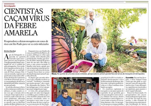 Cientistas caçam vírus da febre amarela