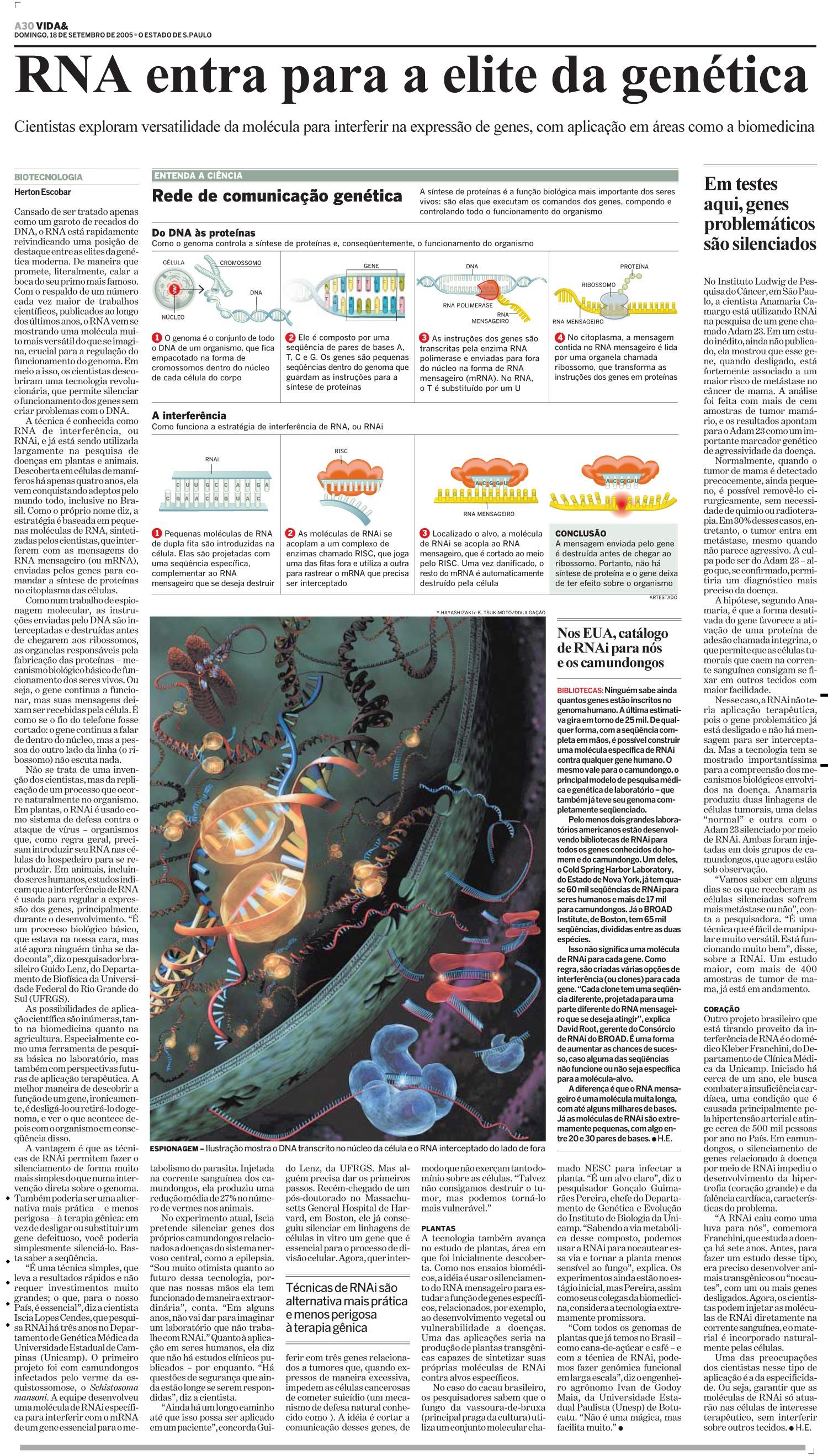 RNA entra para a elite da genética