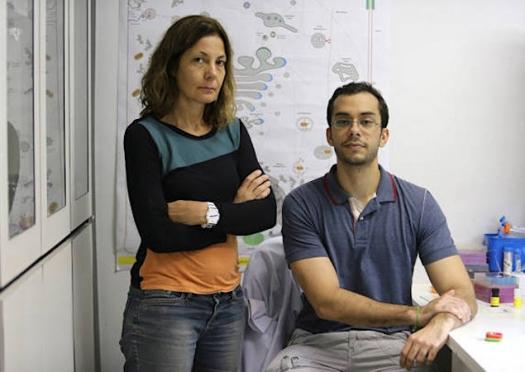 Cientistas vão às ruas contra corte em investimentos