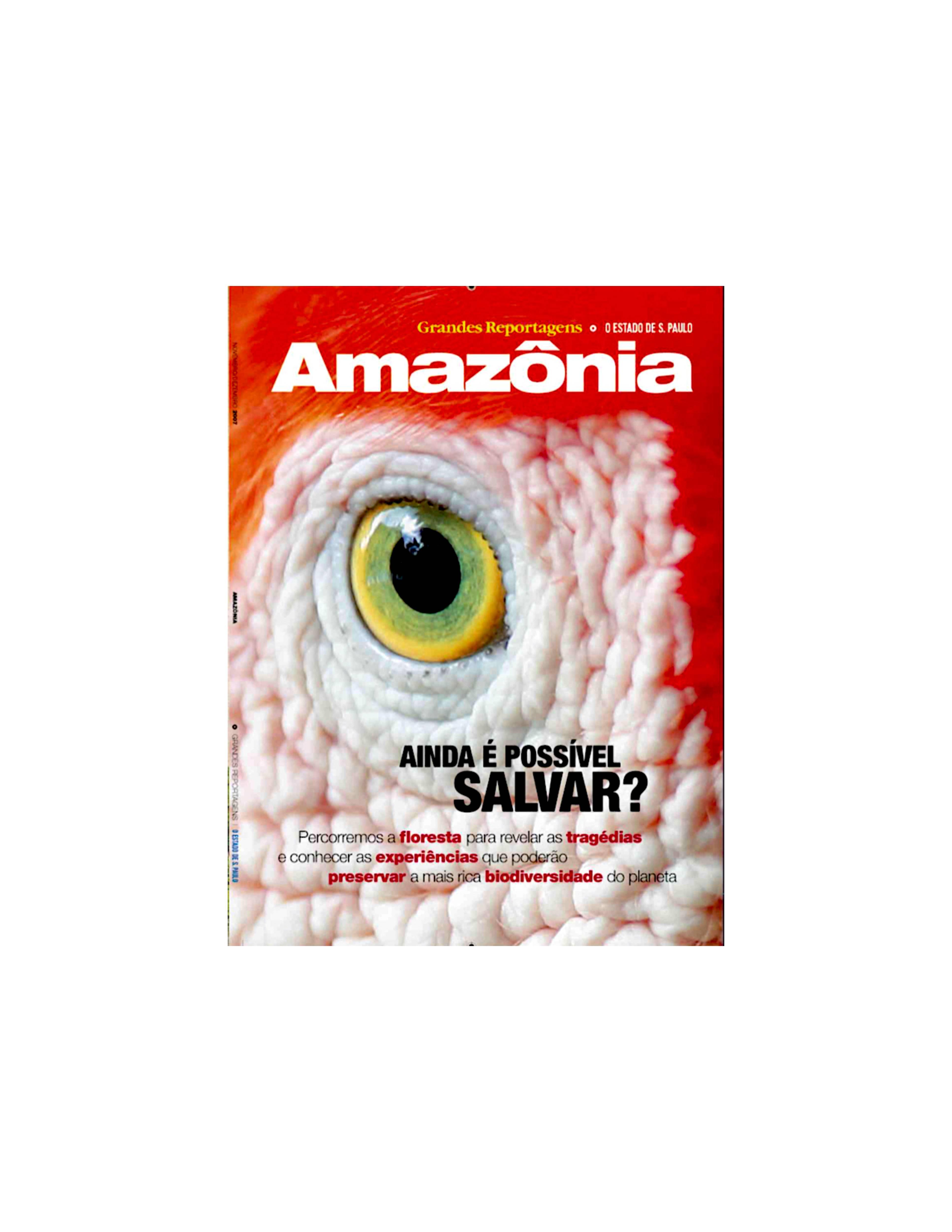Amazônia: Ainda é possível salvar?