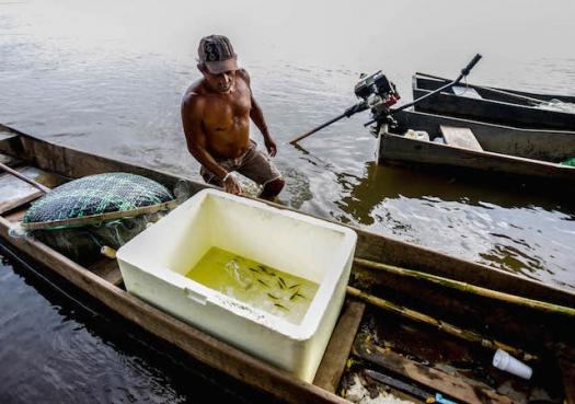 Lama expõe histórico de degradação ambiental no Rio Doce