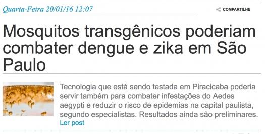 Mosquitos transgênicos poderiam combater dengue e zika em São Paulo