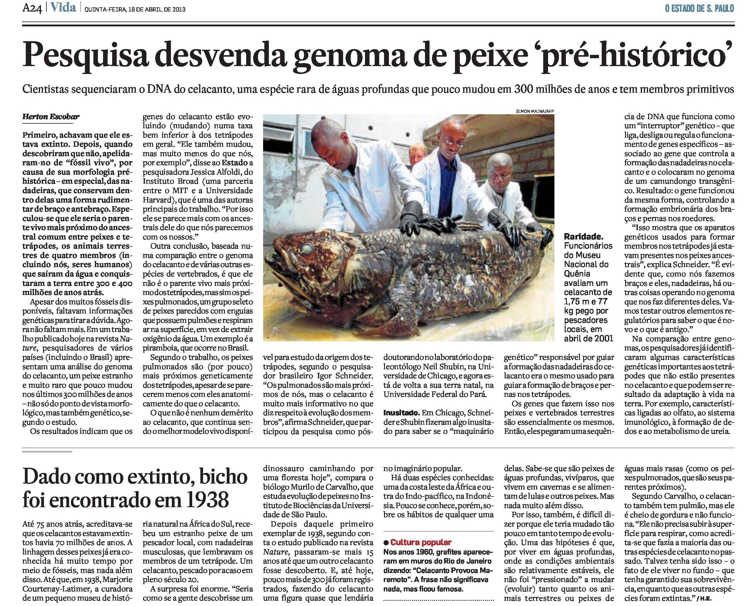 Pesquisa desvenda genoma do celacanto, peixe pré-histórico