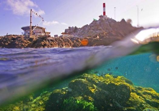 Monumentos Naturais restringiriam ações de pesquisa e proteção em ilhas, diz Marinha
