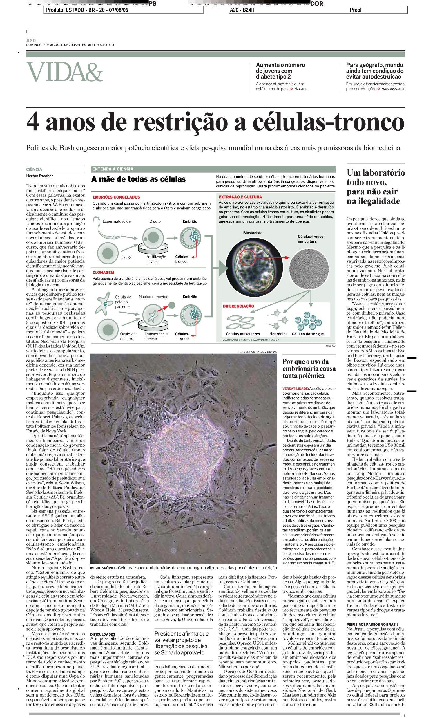 4 anos de restrição a células-tronco