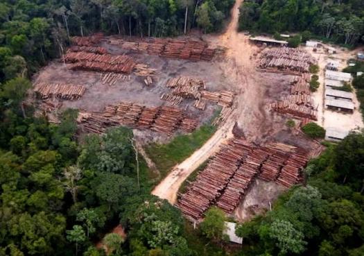 Plano do governo para Amazônia mantém desmatamento em alta