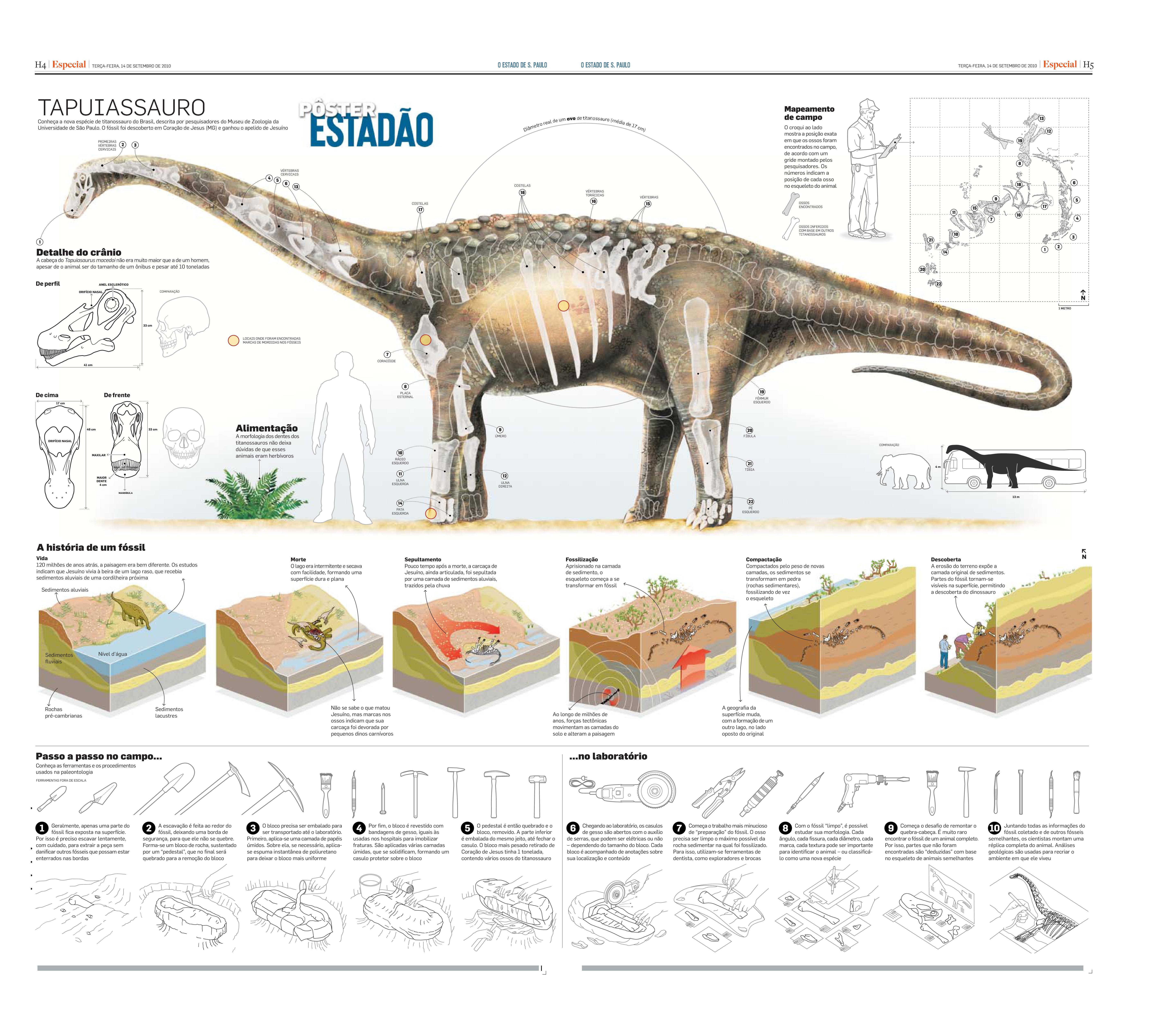 Dinossauros do Brasil - Caderno Especial (pags. 4 e 5)