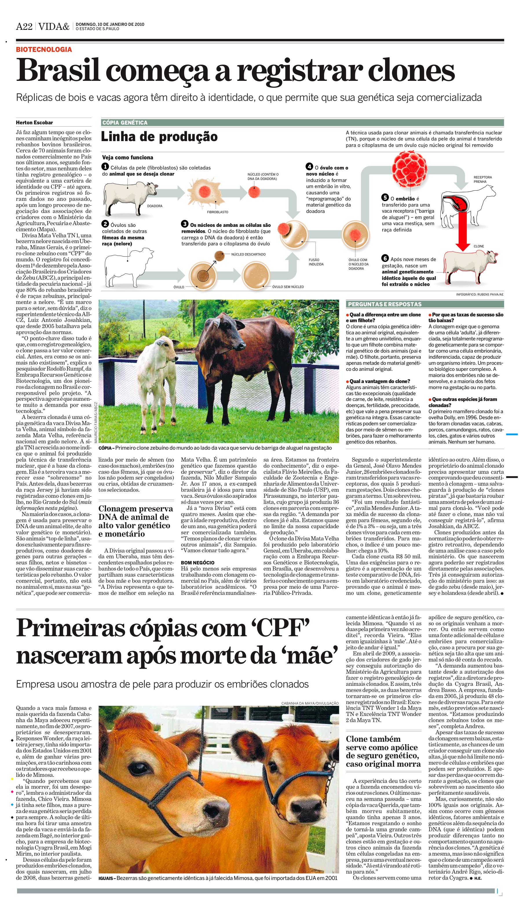 Brasil começa a registrar clones