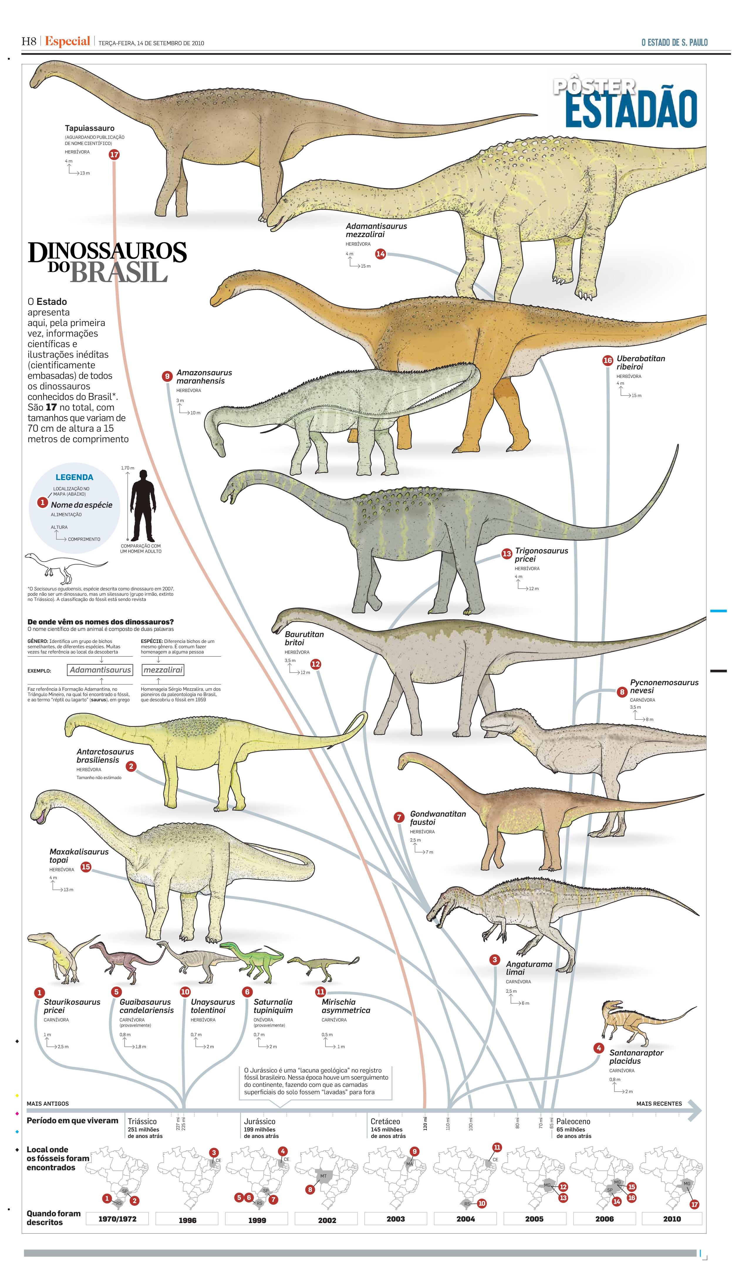 Dinossauros do Brasil - Caderno Especial (pag. 8)